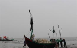 'Xông' biển đầu năm, thu đậm 'lộc' trời