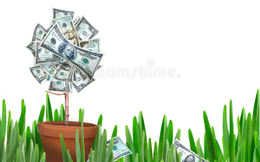 Công viên nước Đầm Sen trả tiếp 20% cổ tức bằng tiền