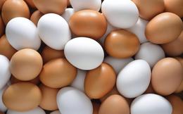 Hòa Phát sẽ bán 20 triệu trứng gà trong năm 2018, mục tiêu đẩy nhanh dự án Dung Quất