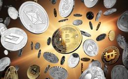 Quỹ đầu tư lớn nhất thế giới cảnh báo nguy cơ mất trắng vì tiền ảo