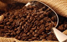 Xuất khẩu cà phê tăng cả lượng lẫn giá trị