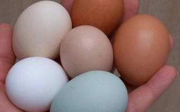 Chuyên gia khẳng định: Ăn trứng gà theo cách này, lợi ích thì ít mà tác hại vô cùng lớn