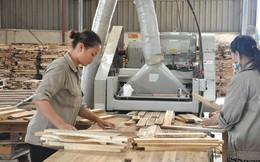 Ngành gỗ đặt mục tiêu xuất khẩu 10 tỷ USD, tiêu thụ nội địa 4 tỷ USD