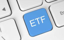 Đáng chú ý: Cả quỹ ETF nội và ngoại đều bị rút vốn