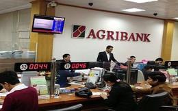 Agribank đấu giá tài sản của Khoáng sản Miền Trung với giá 284 tỷ đồng