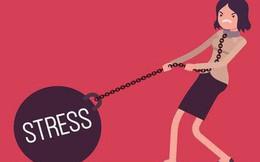 Phát điên vì stress, chỉ cần nghe bản nhạc của các nhà thần kinh học ở Anh này