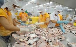 """""""Cơn bão"""" áp thuế của Mỹ nối dài khó khăn của doanh nghiệp cá tra Việt"""