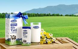 Vừa mua hơn 6,6 triệu cổ phiếu VNM, F&N Dairy lại đăng ký mua tiếp hơn 14 triệu cổ phiếu
