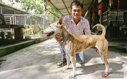 """Gặp chàng trai từ phụ bếp trở thành """"triệu phú"""" sở hữu trang trại nuôi chó Phú Quốc trị giá hàng tỷ đồng"""