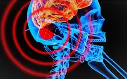 Hậu quả khôn lường khi lúc nào bạn cũng kè kè smartphone: Càng sử dụng điện thoại nhiều, não càng trì trệ
