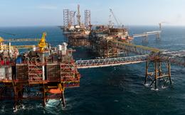 Giá dầu leo thang trước cuộc họp của OPEC và các nhà sản xuất đá phiến của Mỹ