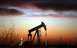 IEA dự đoán kịch bản ác mộng đối với OPEC