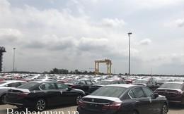 924 ô tô Honda về cảng Hải Phòng nộp thuế gần 224 tỷ đồng