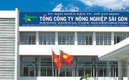 TGĐ Công ty Nông nghiệp Sài Gòn bị kỷ luật khiển trách