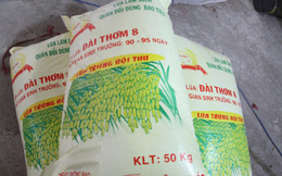 Doanh nghiệp làm giả nhãn hiệu lúa giống bán cho nông dân