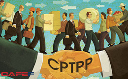 Người trong cuộc tiết lộ cuộc đàm phán thâu đêm cứu TPP tại Đà Nẵng