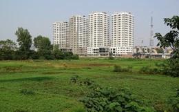 Năm 2018, TPHCM sẽ xem xét lộ trình chuyển 1/3 diện tích đất nông nghiệp sang đất đô thị