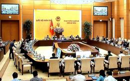 Khai mạc phiên họp thứ 23 của Ủy ban Thường vụ Quốc hội