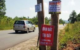 """Đất Phú Quốc """"sốt nóng"""", Phó thủ tướng yêu cầu thanh tra khẩn việc phân lô, tách thửa đất nông nghiệp"""