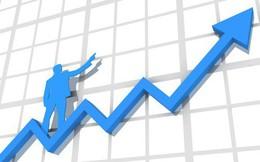 Vì sao các nhà đầu tư giá trị đích thực luôn có khả năng mua đáy bán đỉnh?