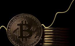 Quỹ đầu cơ tin đã đến lúc nên mua Bitcoin