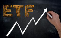 Trong 2 tuần đầu tháng 4, VNM ETF hút ròng gần 11 triệu USD để mua cổ phiếu Việt Nam
