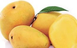 7 loại rau quả mùa hè phòng chống ung thư