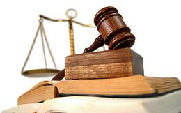 Dùng 15 tài khoản khác nhau để thao túng giá cổ phiếu SGO, thêm một cá nhân bị phạt nặng