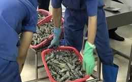 Bơm chích tạp chất vào tôm, 2 đối tượng bị xử phạt hàng trăm triệu