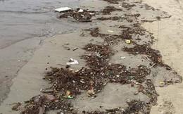 Bãi biển Đà Nẵng ngập rác vì mưa lớn trong ngày hàng nghìn du khách đổ về nghỉ lễ