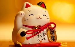 Tháng 4 của các cung Hoàng đạo: Kim Ngưu may mắn trong sự nghiệp, Song Tử thuận lợi trong tình yêu và tài chính