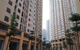 Yêu cầu chủ đầu tư chung cư New Horizon City khắc phục dứt điểm vấn đề PCCC
