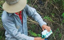 Mỗi ngày, Việt Nam chi 2,15 triệu USD nhập thuốc trừ sâu