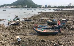 Bất động sản TP Vũng Tàu sẽ đón nhận nhiều dự án ven biển