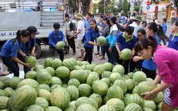 """Người thành thị nói gì khi được khuyên """"không nên tham gia giải cứu nông sản""""?"""