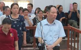 Cựu Phó Giám đốc Sở Nông nghiệp và Phát triển nông thôn Hà Nội lĩnh án 12 năm tù