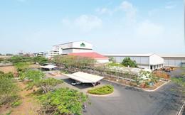 Thành Thành Công – Biên Hòa (SBT) đã chi 1.100 tỷ mua lại gần 62 triệu cổ phiếu quỹ
