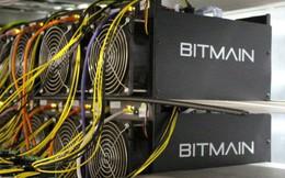 """""""Cá voi"""" khai thác tiền mã hóa số 1 thế giới muốn chuyển hướng sang trí tuệ nhân tạo, khi mà Bitcoin đã """"hạ sốt """""""