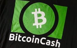 Chuyên gia tiền số nhận định Bitcoin cash đang lên ngôi