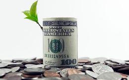 Lịch chốt quyền nhận cổ tức bằng tiền của 28 doanh nghiệp