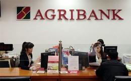 Liên tục hạ giá, Agribank vẫn chưa bán được tài sản công ty Lifepro từng khiến cựu TGĐ ngân hàng này vướng vòng lao lý