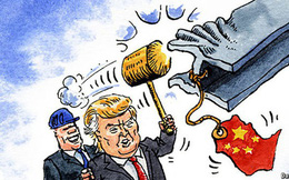 HSBC: Doanh nghiệp gặp nhiều rủi ro vì thiếu thông tin về chính sách thương mại toàn cầu