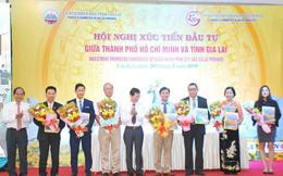 10 dự án đầu tư vào Gia Lai gần 5 nghìn tỷ đồng