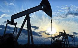 Thị trường hàng hóa ngày 29/5: Thép, cao su phục hồi trong khi dầu xuống thấp nhất 6 tuần