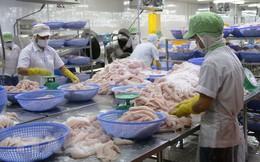 Vượt rào cản, cá tra Việt chiếm ưu thế trên thị trường Mỹ
