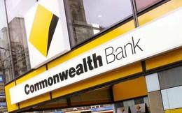 Ngân hàng lớn nhất Australia làm mất thông tin của hơn 20 triệu tài khoản