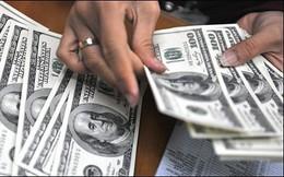NHNN: Sẽ ổn định thị trường ngoại tệ và tỷ giá trong biên độ cho phép