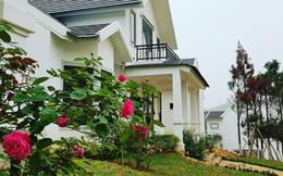 Xu hướng sở hữu biệt thự ven đô của giới nhà giàu Hà Nội
