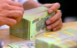 Gian lận trong kinh doanh bảo hiểm sẽ bị phạt đến 100 triệu đồng