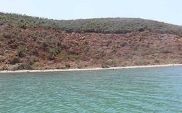 Cử cán bộ 'nằm vùng' ngăn sốt đất Vân Phong